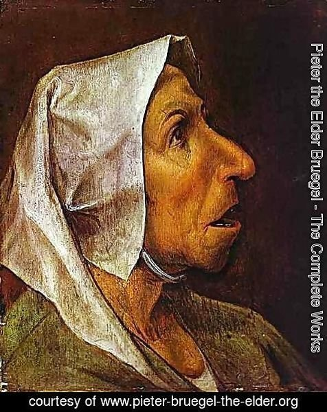 Pieter the Elder Bruegel - Portrait of an Old Woman 1563
